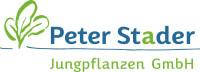 Peter Stader Jungpflanzen Logo